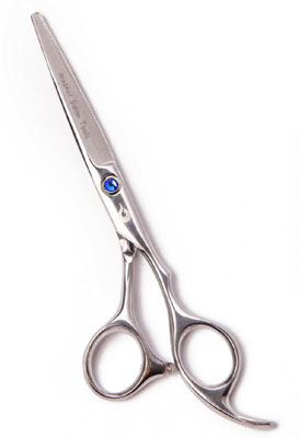 best professional hair cutting shears reviews